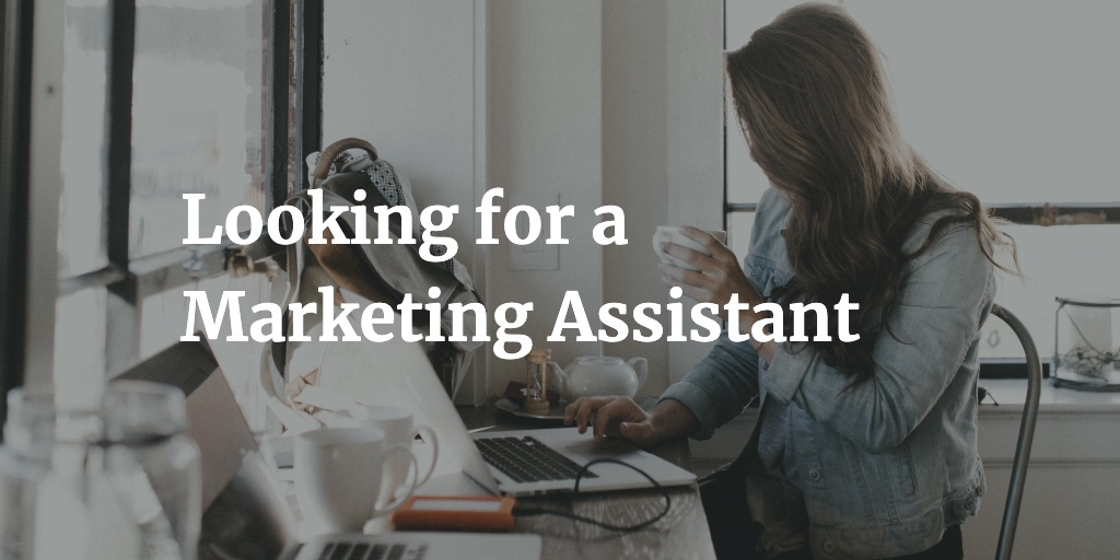Looking for a Marketing Assistant
